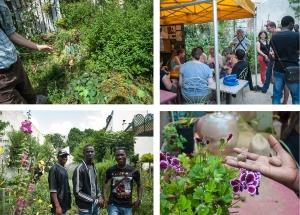 3- Découverte du jardin partagé de la Cité Leroy